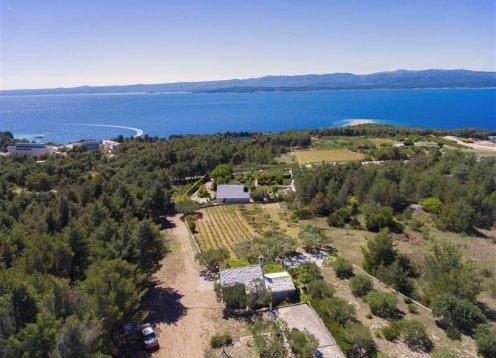 Kuća za odmor Ivan - Bol - otok Brač (4) 36692-K1