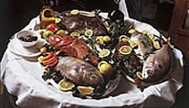 dalmatinska riba